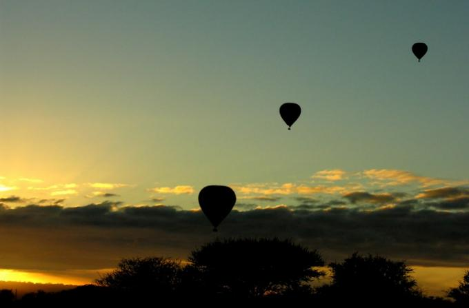 Three balloons at sunrise